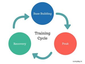 training cycle - base building, peak and recovery