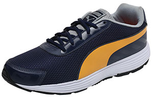 Puma Men's Ridge Running Shoe