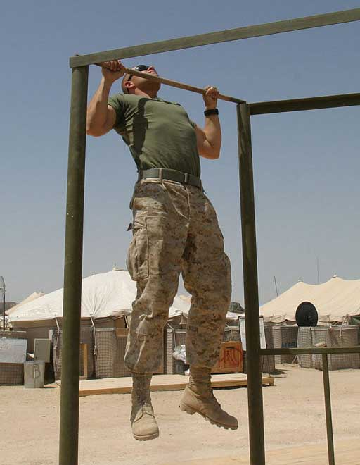 pull up exercise
