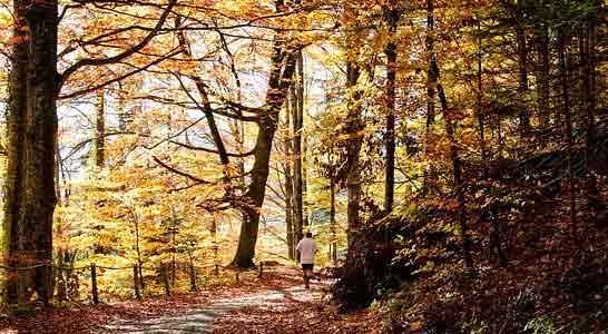 man enjoying running in the trails